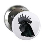 "Ayam Ceymani Rooster 2.25"" Button (100 pack)"