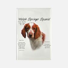 Welsh Springer Spaniel Rectangle Magnet