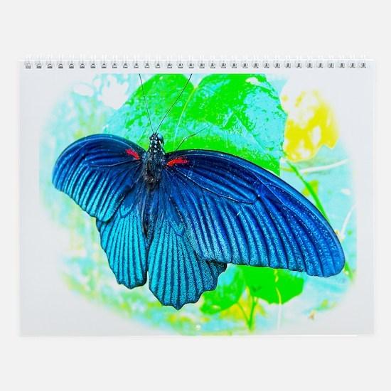 Great Mormon Butterfly Wall Calendar