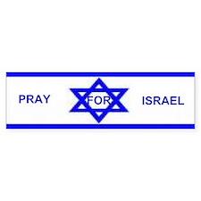 Israeli Flag Bumper Bumper Sticker