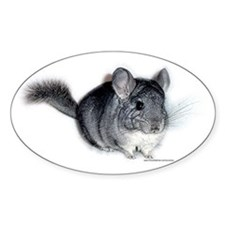 Chinchilla Oval Decal
