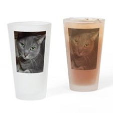 Russian Blue Gray Cat Drinking Glass
