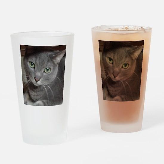 Russian Blue Gray Cat Drinking Glass