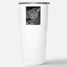 Gray Cat Russian Blue Travel Mug