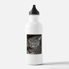 Gray Cat Russian Blue Water Bottle