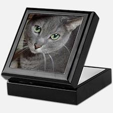 Gray Cat Russian Blue Keepsake Box