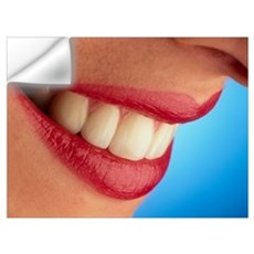 Close-up of a woman's mouth showing healthy teeth Wall Decal
