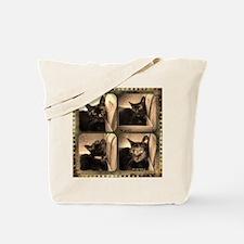 Box cat, sepia x 4 Tote Bag
