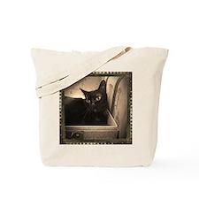 Box Cat, sepia 1 Tote Bag