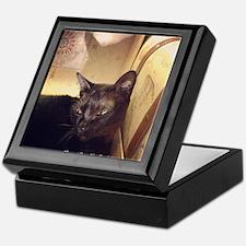 Box Cat, gold, spooky Keepsake Box
