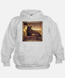 Burmese Cat, Gold Filter, Reclining Hoodie