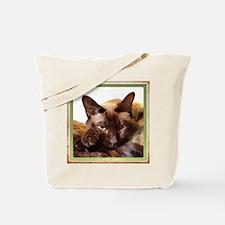 IMG_8150.jpg Tote Bag