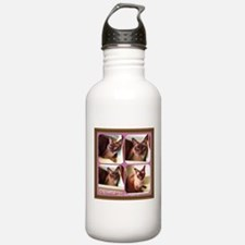 Champagne Burmese Box Cat x4 Sports Water Bottle