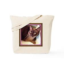 Champagne Burmese Box Cat Tote Bag
