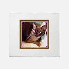 Champagne Burmese Box Cat Throw Blanket