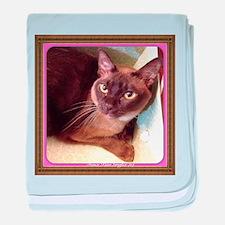 Champagne Burmese Box Cat baby blanket