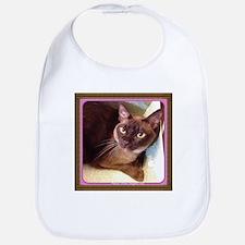 Champagne Burmese Box Cat Bib