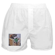 Reading Cat Boxer Shorts
