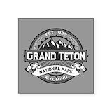 Grand teton national park Square
