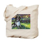 English springer spaniel Accessories
