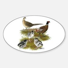 Pheasant Family Decal