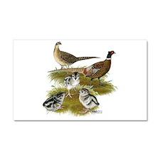 Pheasant Family Car Magnet 20 x 12