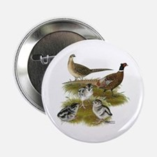 "Pheasant Family 2.25"" Button"