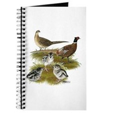 Pheasant Family Journal