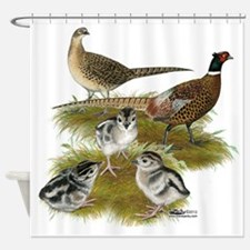 Pheasant Family Shower Curtain