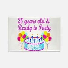 HAPPY 20TH BIRTHDAY Rectangle Magnet (100 pack)