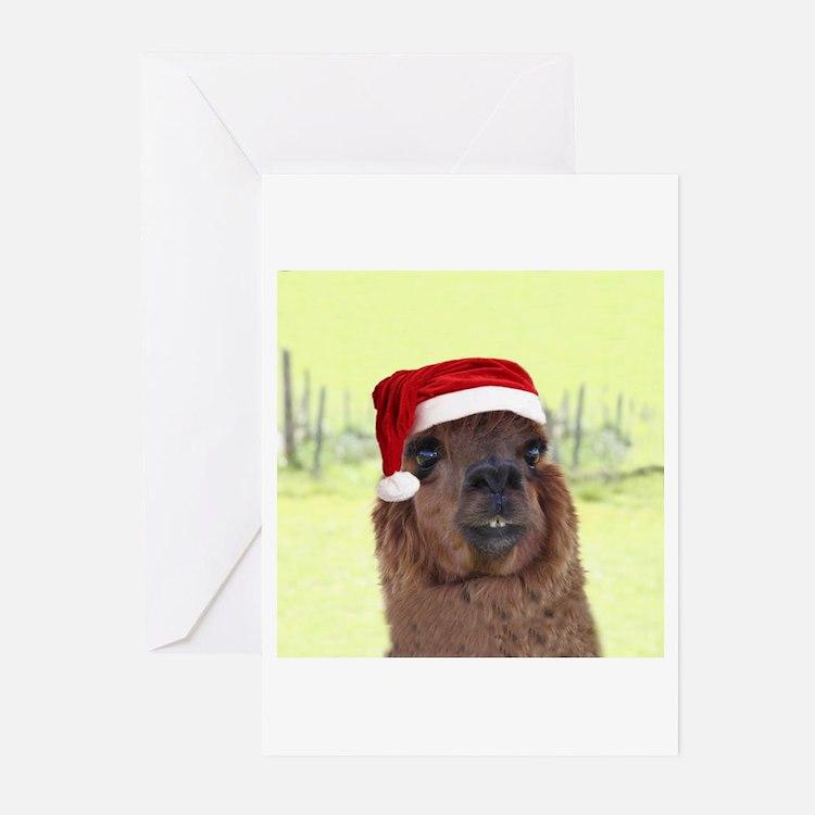 Smiley Alpaca Greeting Cards (Pk of 10)
