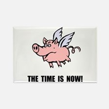 When Pigs Fly Rectangle Magnet (10 pack)