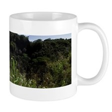 Wailua Waterfall Panorama Mug