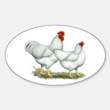 White Rock Chickens Sticker (Oval)
