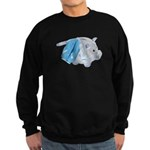 Letterman Jacket Piggy Bank Sweatshirt (dark)