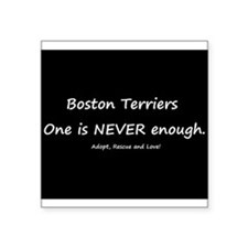 Boston Terriers-One is NEVER enough. Square Sticke