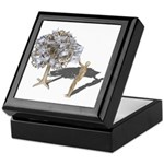 Taking Money from Money Tree Keepsake Box