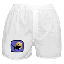 Witch Squirrel Cat Blue Boxer Shorts