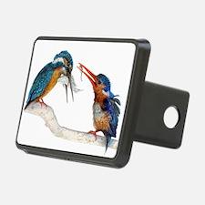 Malachite Kingfishers - It Still Counts Rectangula
