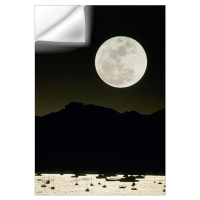 Full moon seen from Earth over mountains Wall Decal