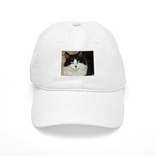 Black and White Cat Baseball Cap