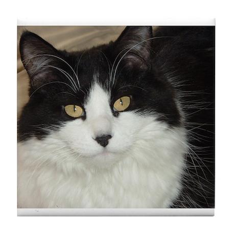 Black and White Cat Tile Coaster