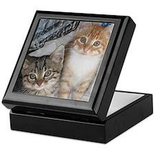 Orange and Gray Tabby Kitty Cats Keepsake Box