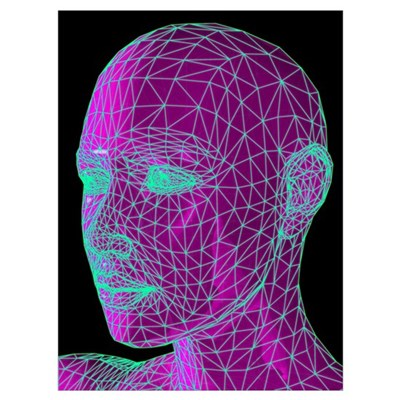 Head contour map, art Framed Print