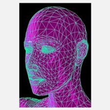 Head contour map, art