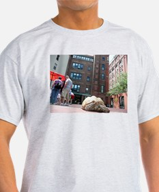 Sulcata Tortoise on the Loose T-Shirt