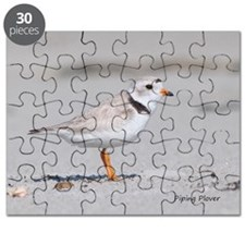 Noah's Birds Piping Plover Puzzle