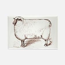 Victorian Lamb Rectangle Magnet