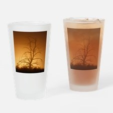 Tree over water Drinking Glass