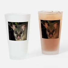 Australian Brushtail Possum Drinking Glass